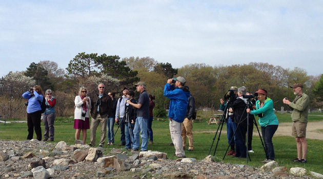 The Music Hall goes outdoors to bird watch with writer David Allen Sibley