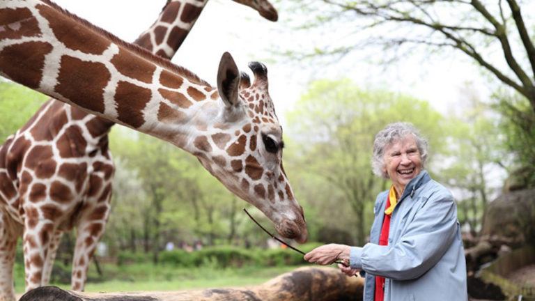 Show + Tell: The Woman Who Loves Giraffes